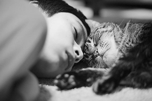 Super fofo: 20 fotos que revelam o carinho entre crianças e
